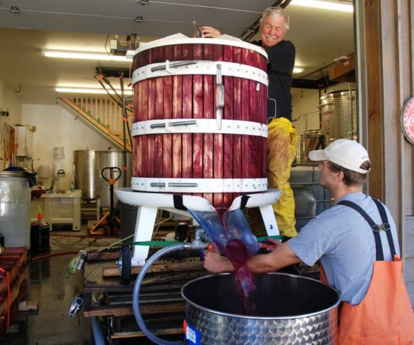 wine pressing at grandfather vineyard tatum