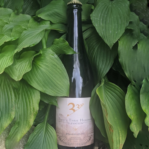 appalachia bubbles, grandfather vineyard sparkling wine